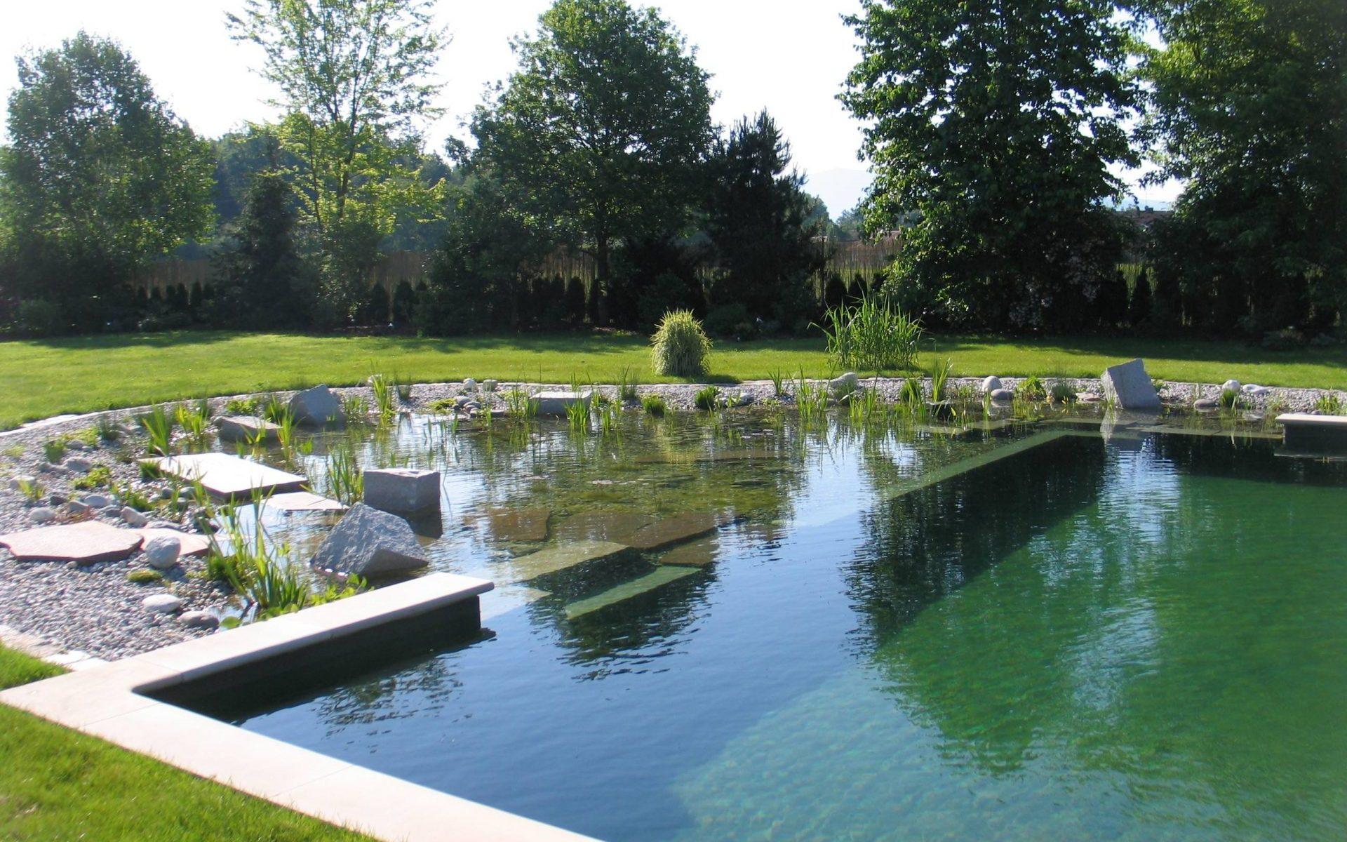 atout piscine naturelle
