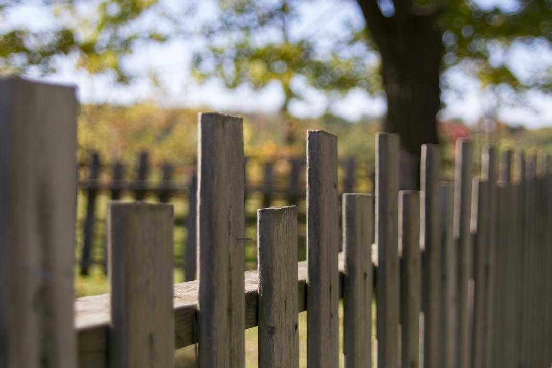 choix portail en bois