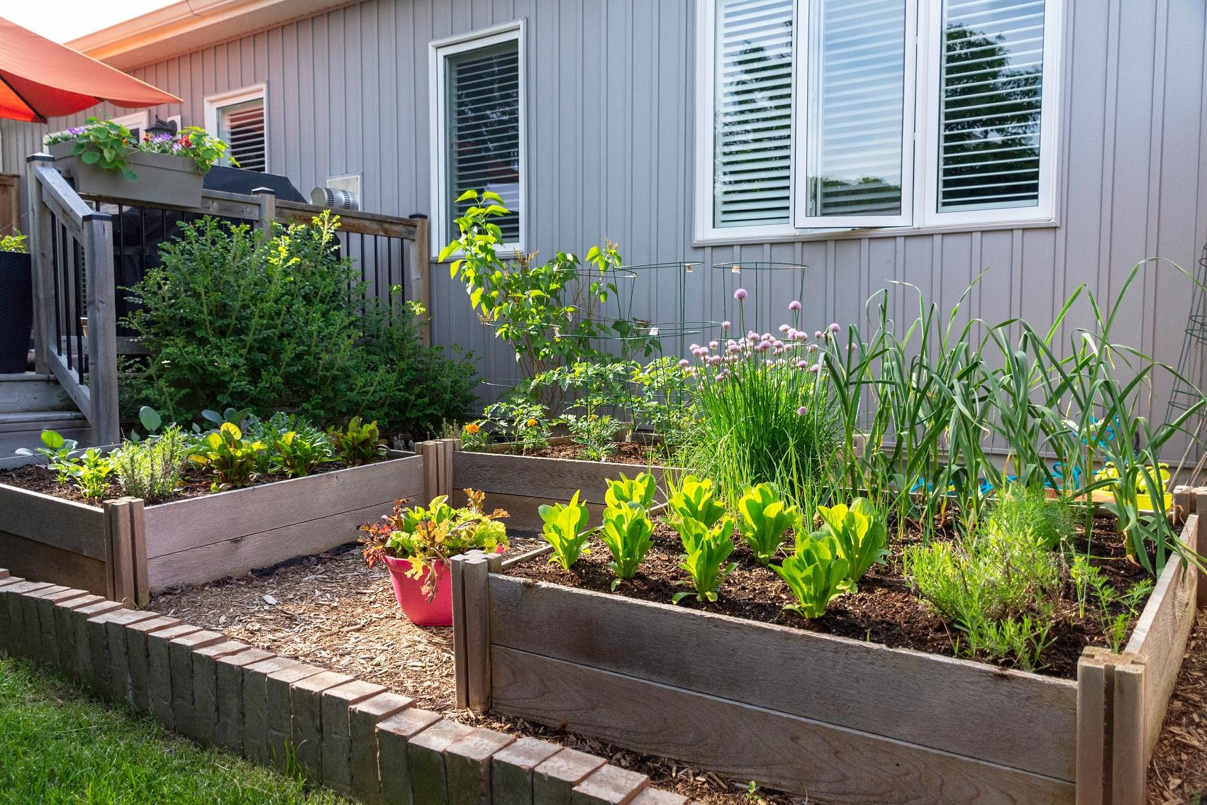 jardin sur terrasse