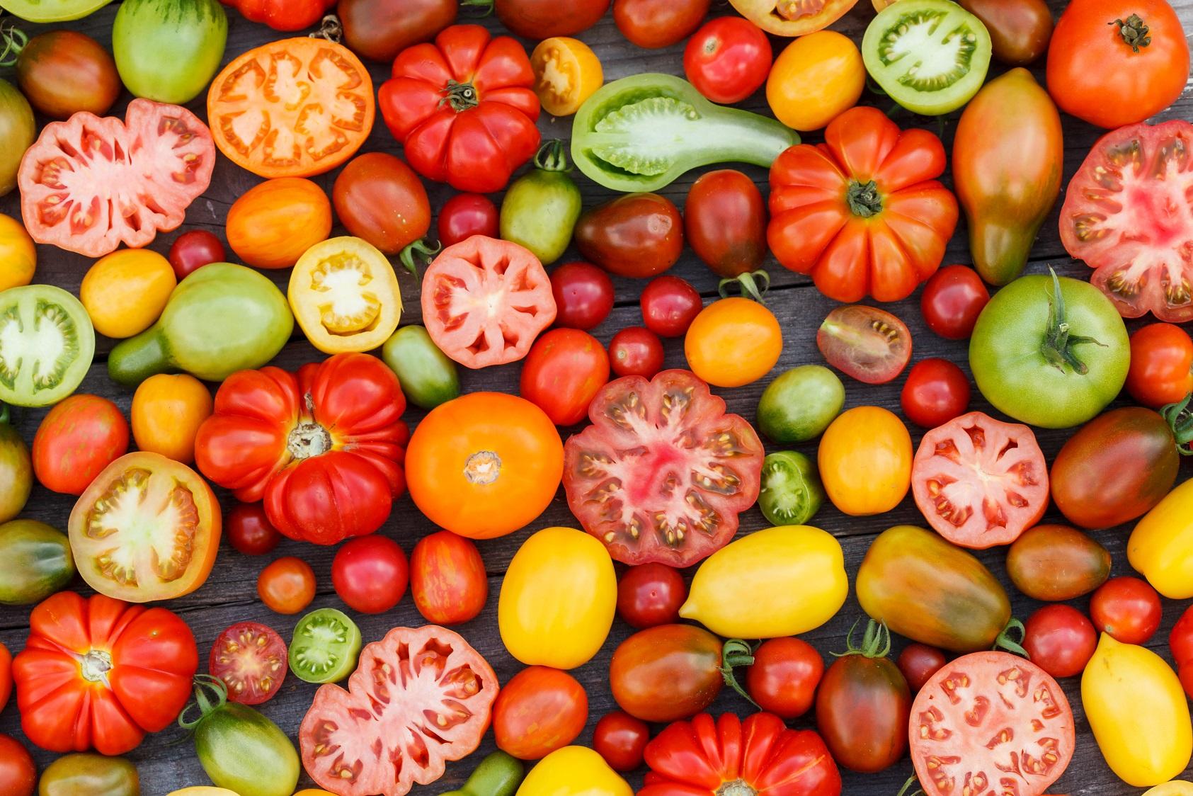 legume facile a cultiver la tomate