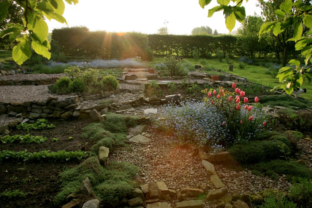 aménager un jardin en permaculture